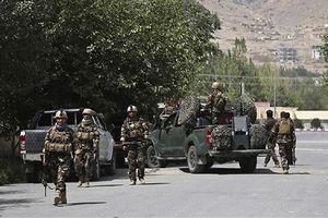 Afghanistan tiêu diệt 87 tay súng Taliban