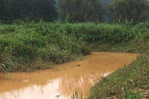 Tìm thấy thi thể nạn nhân cách nơi bị nước cuốn trôi 4km