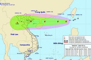 Bão số 5 có thể ảnh hưởng các tỉnh Quảng Ninh đến Thanh Hóa