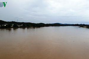 Nước sông Hồng tại Yên Bái chưa bị ảnh hưởng do vỡ đập bãi thải DAP