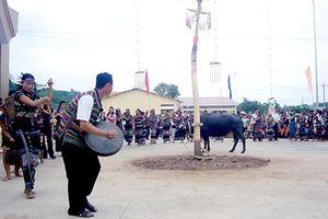 Độc đáo lễ cúng thần lúa của người Mạ ở Đồng Nai