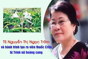 Báo Mỹ ca ngợi Trinh nữ hoàng cung, loại cây được biết đến là 'thảo dược của nhà vua' ở Việt Nam