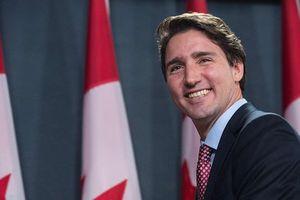 Canada hợp pháp hóa cần sa từ tháng 10