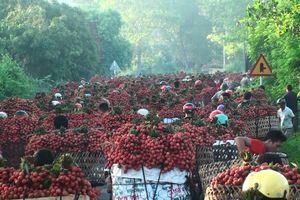 Chợ vùng cao Bắc Giang tắc đường hàng cây số do dân chở vải ra bán