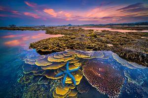 'Sắc màu của biển' đoạt giải nhất cuộc thi ảnh du lịch