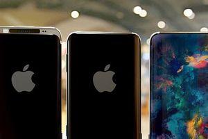 Cận cảnh iPhone 9c đẹp miễn chê với màn hình cong tràn cạnh, phủ toàn bộ mặt trước