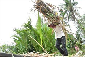Tiếng gọi cù lao miền sông nước: Lối thoát cho Cù Lao Dung