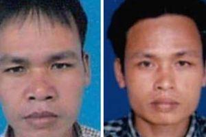 Quảng Nam: Các đối tượng chủ mưu phá rừng run rẩy đầu thú