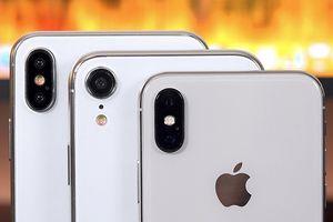 Toàn b iPhone Apple s ra mt nm nay cùng xut hin rõ nét, xem ngay ko l