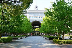 Đại học hàng đầu Nhật Bản có gì đặc biệt?