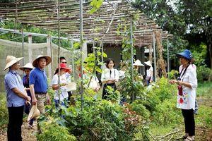 Du lịch nông nghiệp- hướng đi mới của nông dân Việt Nam