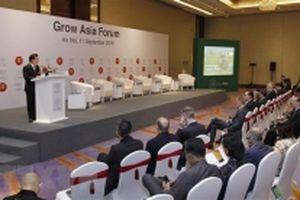 Các hoạt động trước thềm Hội nghị WEF ASEAN 2018