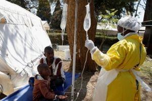 Bùng phát dịch tả tại Zimbabwe, 20 người chết