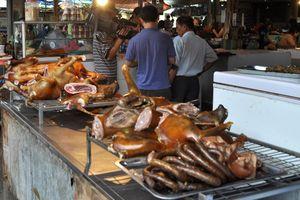 Hà Nội tuyên truyền người dân không ăn thịt chó: Tây ở Việt Nam ủng hộ nói 'không'!
