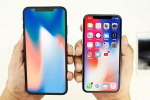 Người dùng có xu hướng thích iPhone, nói không với iPhone Plus
