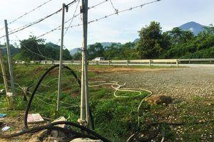 'Bát nháo' trên cao tốc Nội Bài – Lào Cai: Người dân phá rào mở quán, xe khách 'làm loạn'