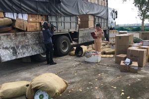 Thanh Hóa: Bắt giữ hơn 1 tấn da đà điểu bốc mùi hôi thối