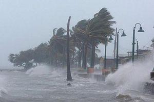 Qung Ninh c d báo là tâm im siêu bão Mangkhut  b