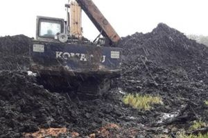 Sau phản ánh của Dân Việt, Chủ tịch TT-Huế chỉ đạo xử lý than bùn lậu