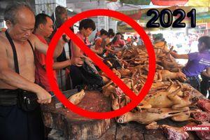Hà Nội lên lộ trình cấm bán thịt chó ở nội thành từ năm 2021