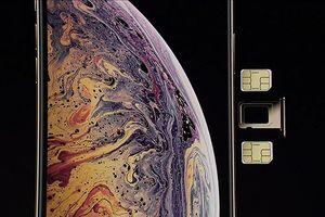 Người dùng ở Việt Nam mua iPhone 2 SIM vật lý ở đâu?