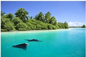 Kinh hoàng hòn đảo bị nguyền rủa khét tiếng nước Mỹ