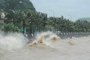 Quảng Ninh: Lãnh đạo cấp huyện thường trực để ứng phó với bão số 6