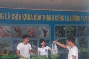 Bắc Ninh: Thực phẩm sạch vào sân bay Nội Bài, trường học
