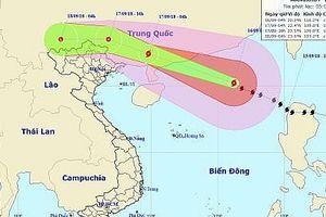 Chiều tối nay bão số 6 sẽ đi vào đất liền Trung Quốc và suy yếu nhanh