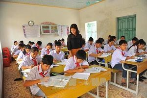 Yêu cầu ngoại ngữ trong Chuẩn hiệu trưởng, Chuẩn giáo viên xa rời thực tế
