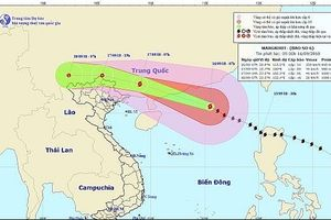 Bão số 6 đổ bộ Trung Quốc, hoàn lưu bão gây mưa lớn ở Việt Nam