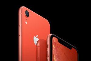 Vì sao iPhone Xr được phát hành muộn hơn iPhone Xs và Xs Max?