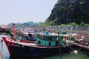 Các địa phương khẩn trương công tác ứng phó siêu bão Mangkhut