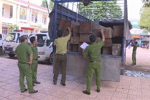 Đắk Lắk: Phát hiện, bắt giữ xe tải chở gỗ lậu