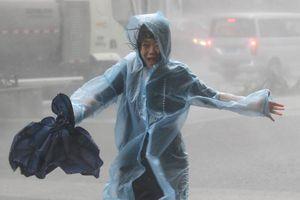 Các tỉnh phía Nam Trung Quốc sẽ chịu ảnh hưởng lớn từ bão Mangkhut
