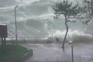 Hồng Kông ngổn ngang vì siêu bão Mangkhut
