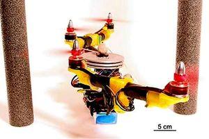 Drone tự 'biến hình' để tránh chướng ngại vật