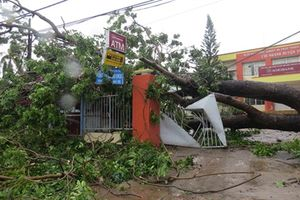 Hơn 1 tỉ đồng hỗ trợ từ cơn bão số 12 vẫn chưa thấy đâu