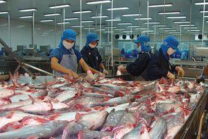 Đề xuất mức tiêu hao năng lượng trong ngành chế biến thủy sản