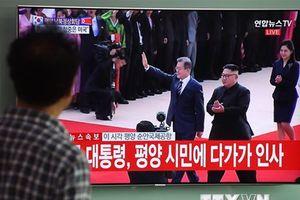 Lãnh đạo Hàn Quốc-Triều Tiên có thể gặp nhau 8 lần trong 3 ngày