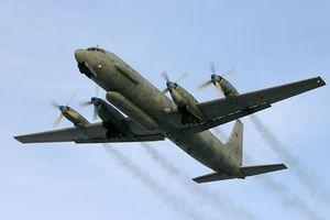 Nga mở cuộc điều tra vụ máy bay IL-20 bị bắn nhầm tại Syria