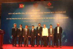 Hội thảo 'Bảo hộ quyền của tổ chức phát sóng trong môi trường số'
