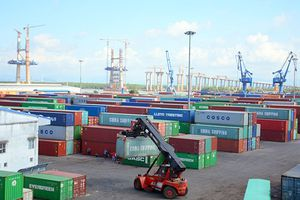 Xuất khẩu rau quả sẽ gặp khó vì xung đột thương mại Mỹ - Trung