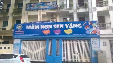 Tong hop nhung vu bao hanh tre mam non gay chan dong du luan - Anh 1